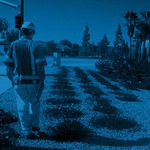 Highway interchange landscape design Murrieta CA