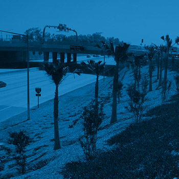 landscape architecture 10 freeway